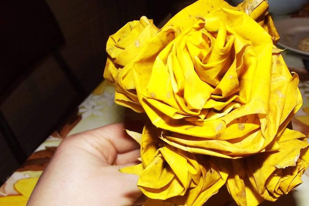 róże z liści