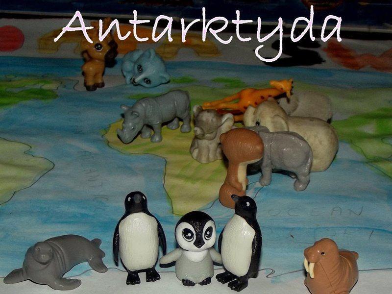 bajkowy projekt blogowy antarktyda