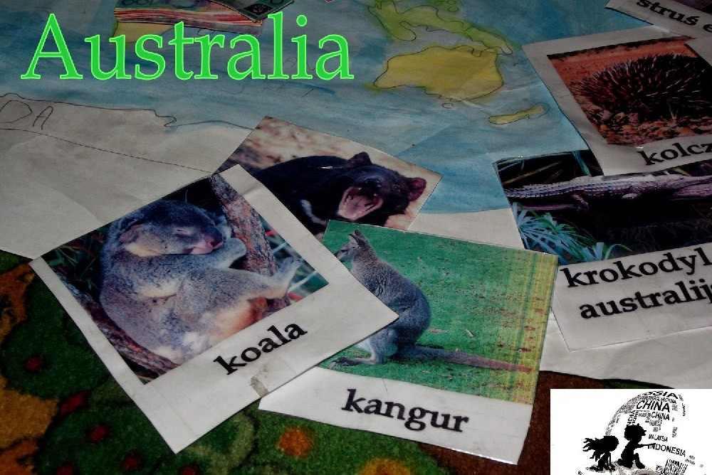 bajkowy projekt blogowy australia