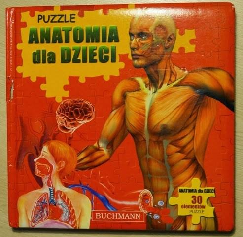 anatomia dla dziecia