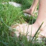 Ścieżka z betonowych liści-dekoracja ogrodu