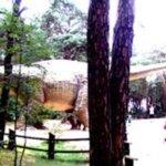 Jura Park w Solcu Kujawskim