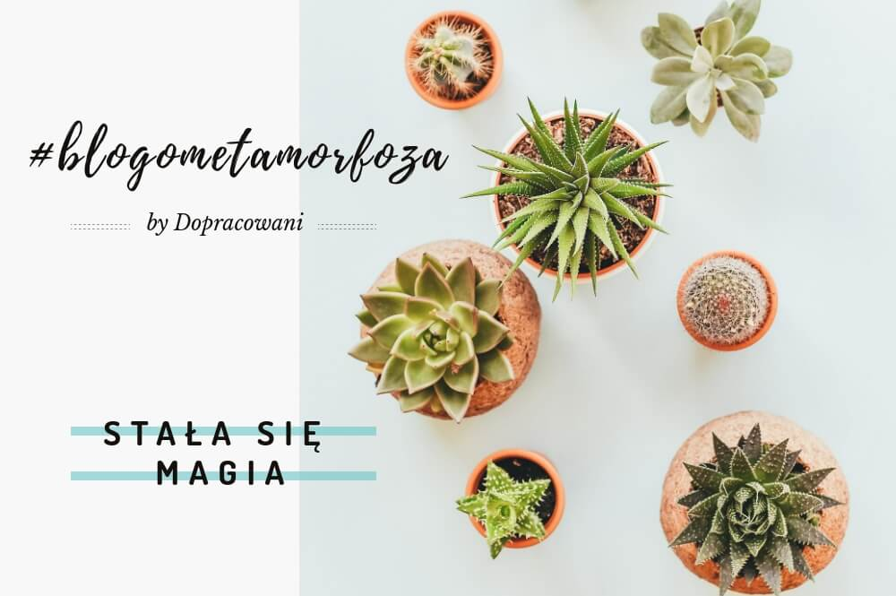 blogometamorfoza