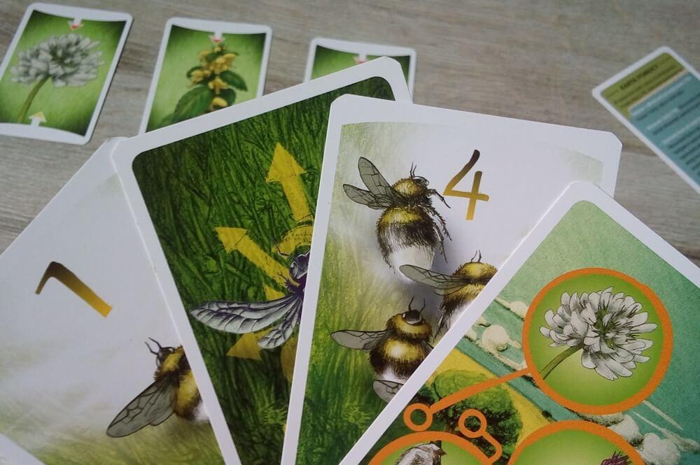pszczoły gra edukacyjna